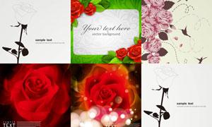 花朵小鸟与玫瑰花底纹背景矢量素材