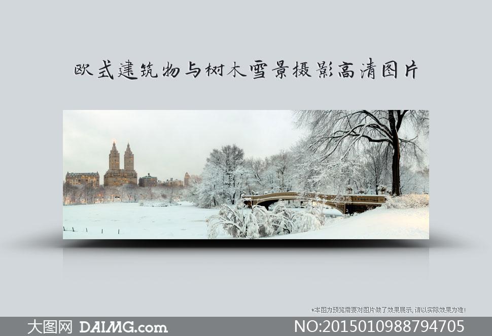 欧式建筑物与树木雪景摄影高清图片