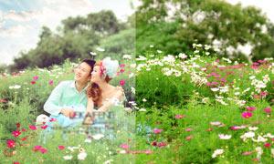 外景婚紗照片唯美暖色效果PSD調色圖層