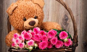 花篮里的泰迪熊与鲜花摄影高清图片
