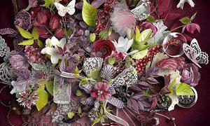 树叶蕾丝花朵与蝴蝶等欧美剪贴素材