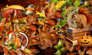 南瓜松鼠小鸟与蘑菇等欧美剪贴素材