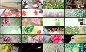 25张淘宝柔美日系广告背景图片