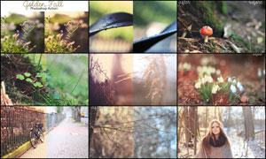 数码照片转秋季唯美淡黄效果调色动作