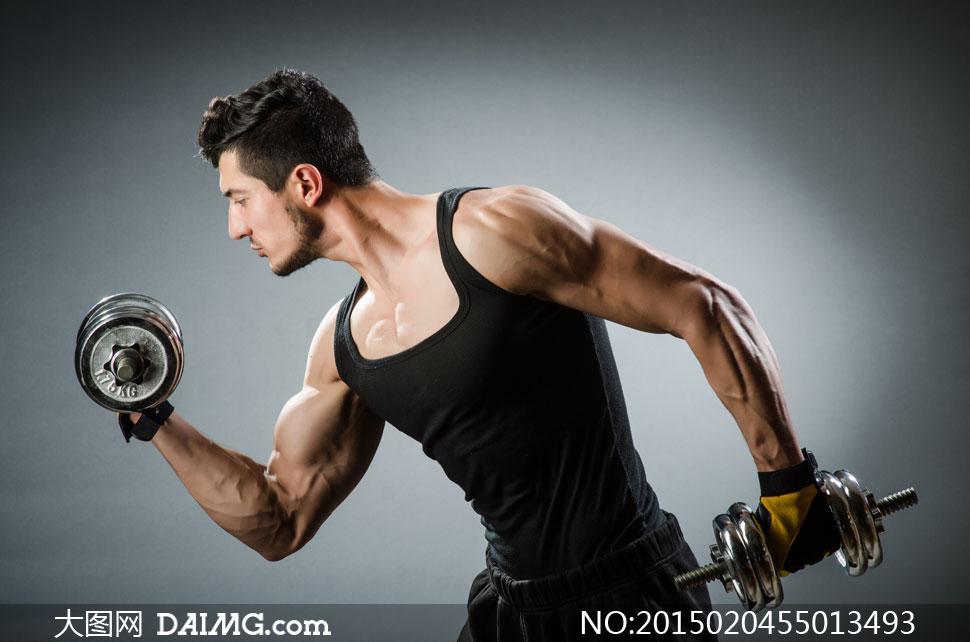 健身二头肌锻炼图解