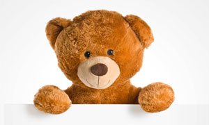双手拿着空白纸板的玩具熊高清图片