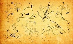 時尚的花紋藤蔓PS形狀