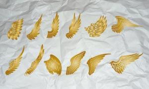 漂亮的天使翅膀PS形狀
