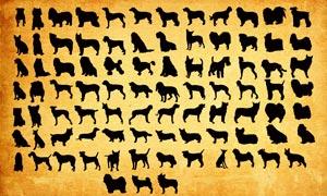 世界名犬剪影大全PS形狀