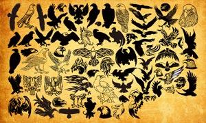 各種老鷹圖形PS形狀