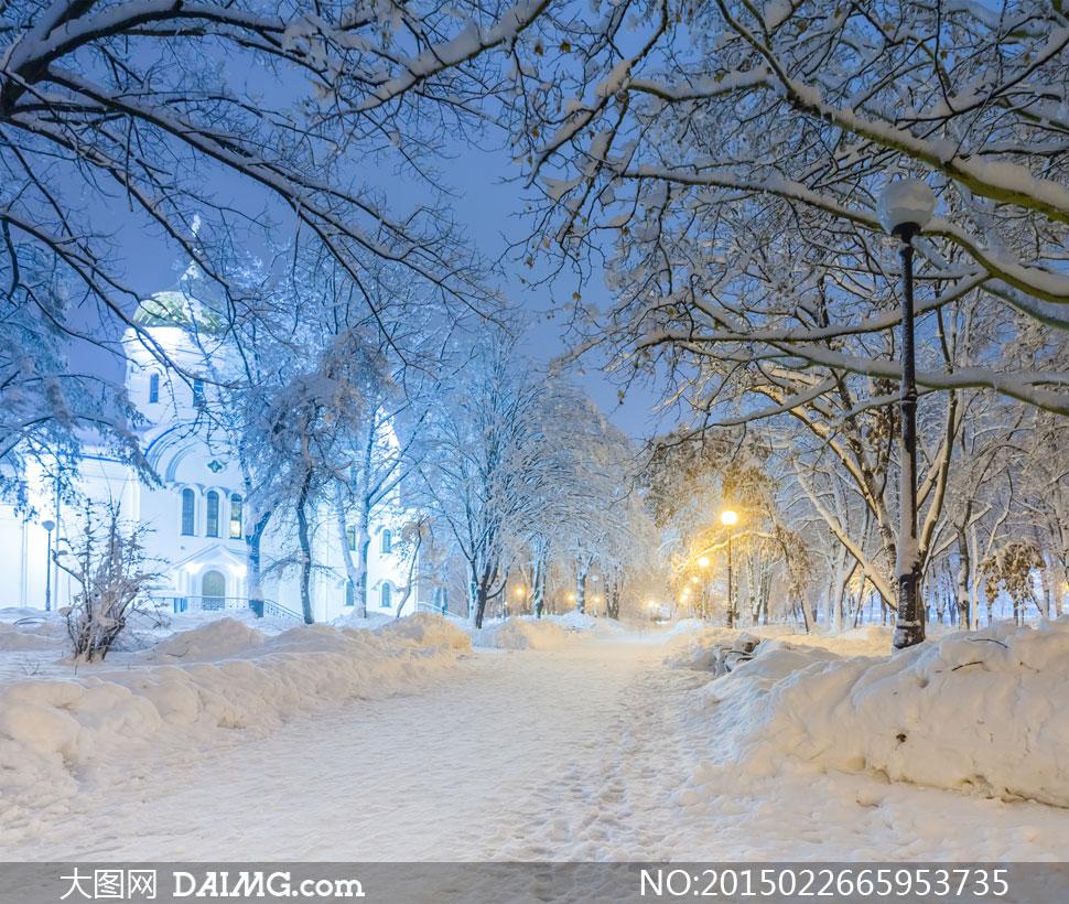 寒冷冬天夜晚雪景风光摄影高清图片