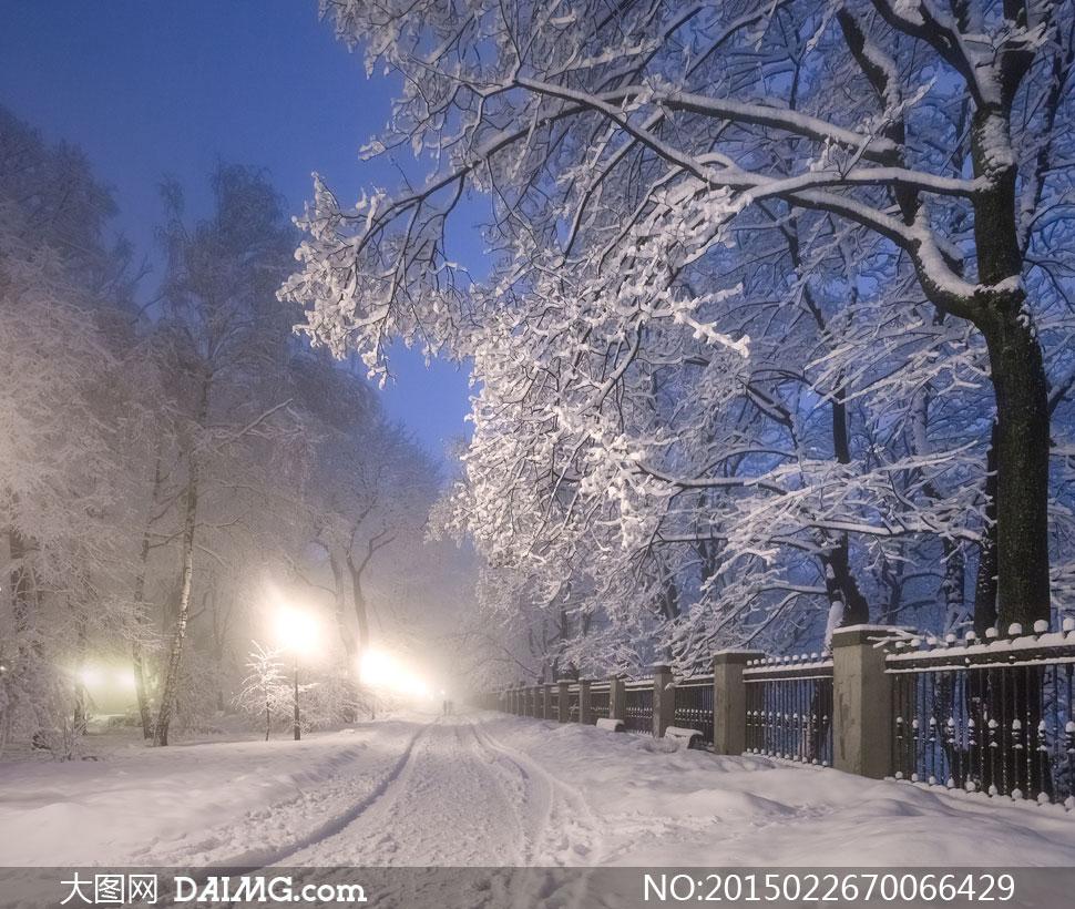 寒冷冬日夜晚雪景风光摄影高清图片