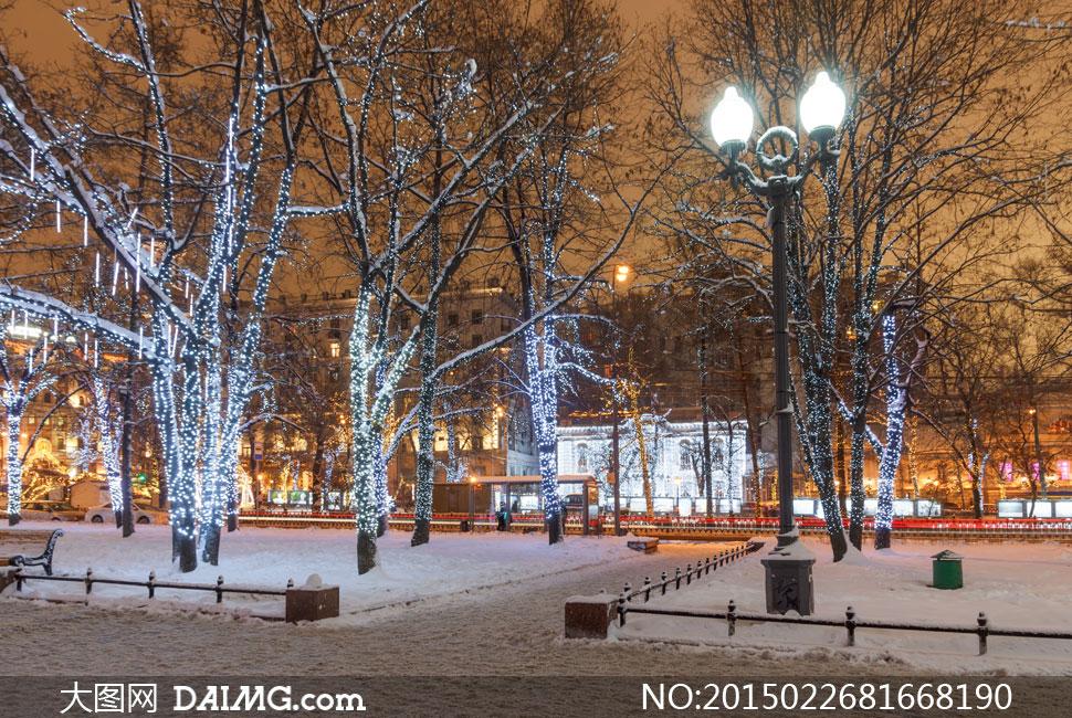 冬天装饰在树上的灯等摄影高清图片