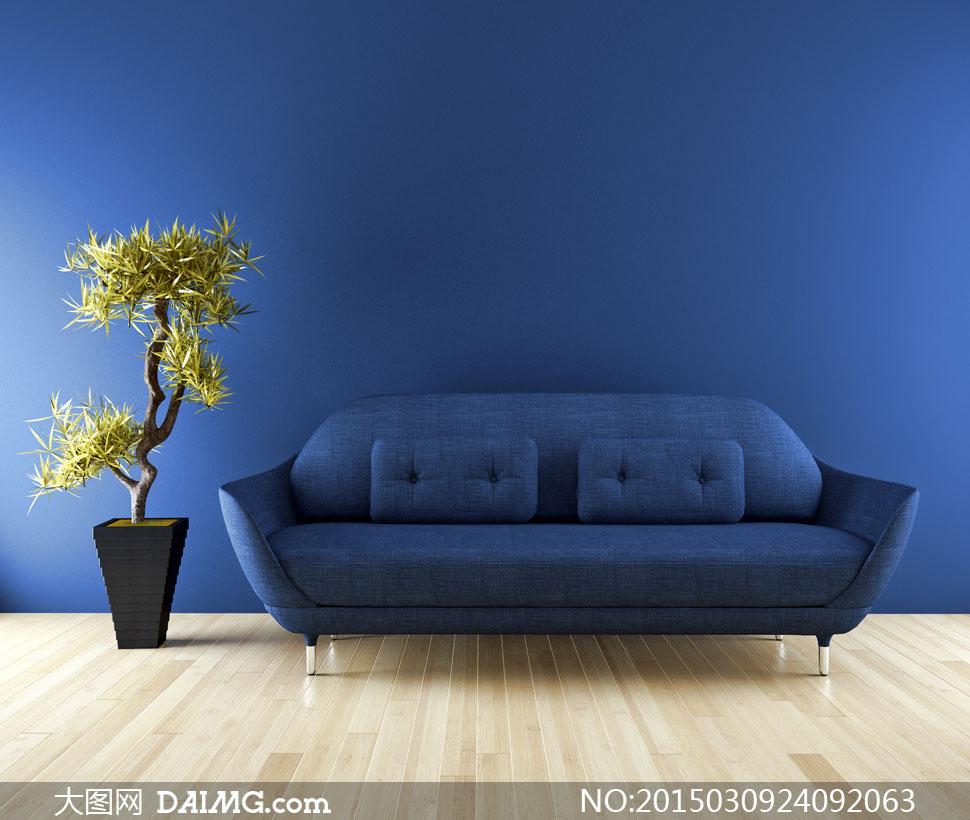 靠枕盆景盆栽墙壁木地板