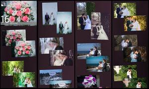 16款婚纱照片后期艺术效果LR预设