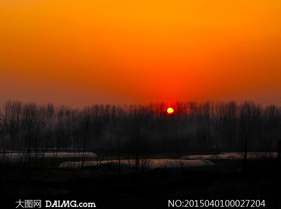 夕阳下的农家田园风光摄影图片