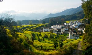 美丽的山间乡村和梯田摄影图片