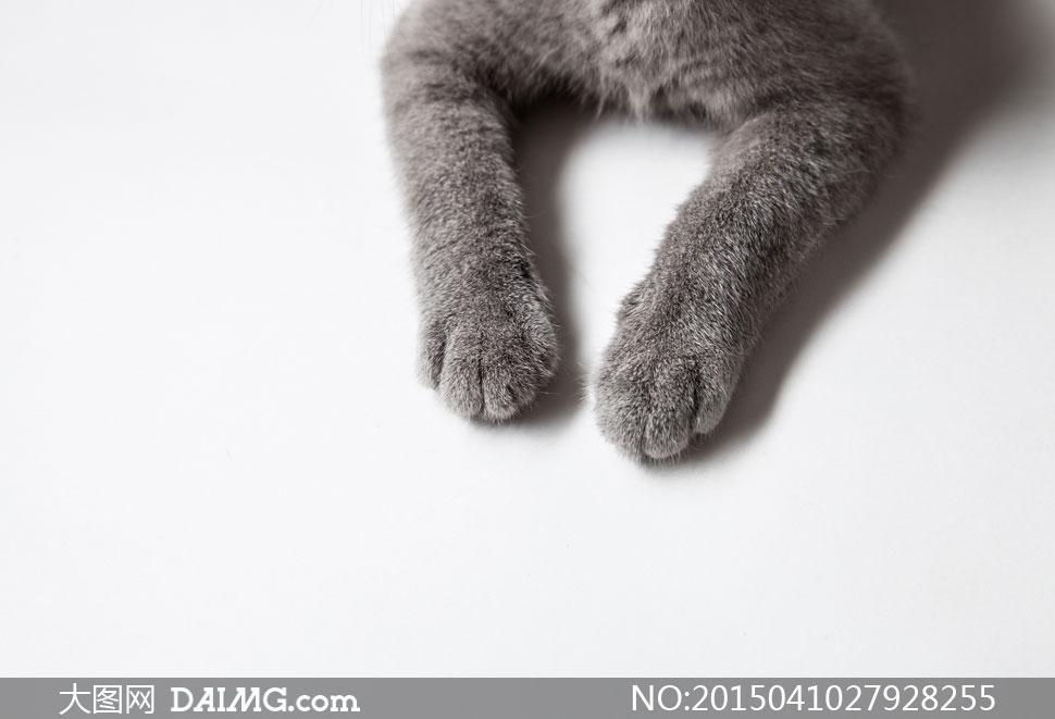 钩针编织猫爪鞋
