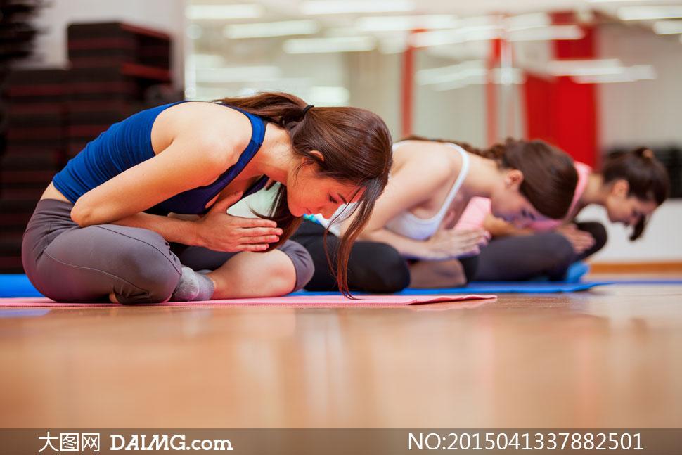 健身房内瑜伽运动美女摄影高清图片