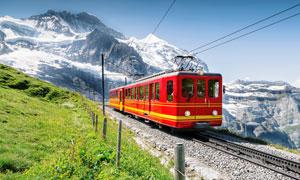 雪山景区中的观光列车