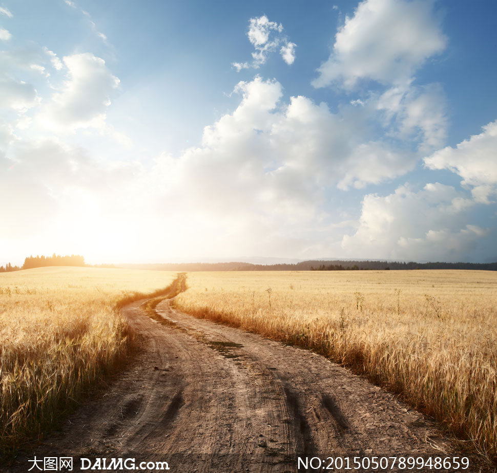 蓝天白云草地树林风景摄影高清图片         蓝天白云与农田