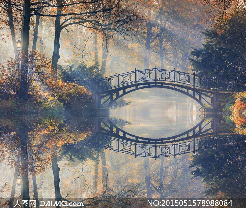 关键词: 高清摄影大图图片素材自然风景风光树木大树茂密茂盛秋天小桥