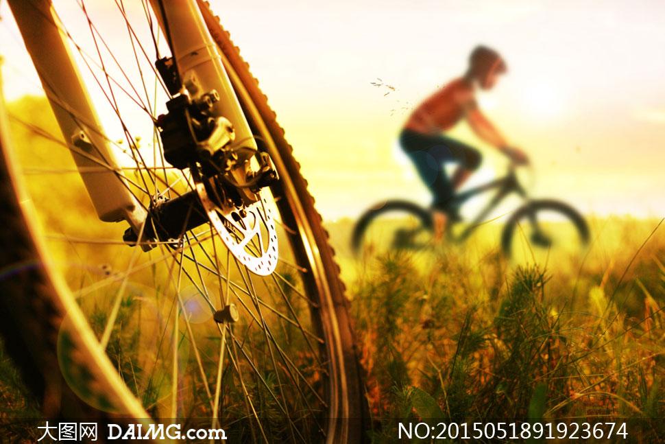 乡村田野骑车人物与风光等高清图片