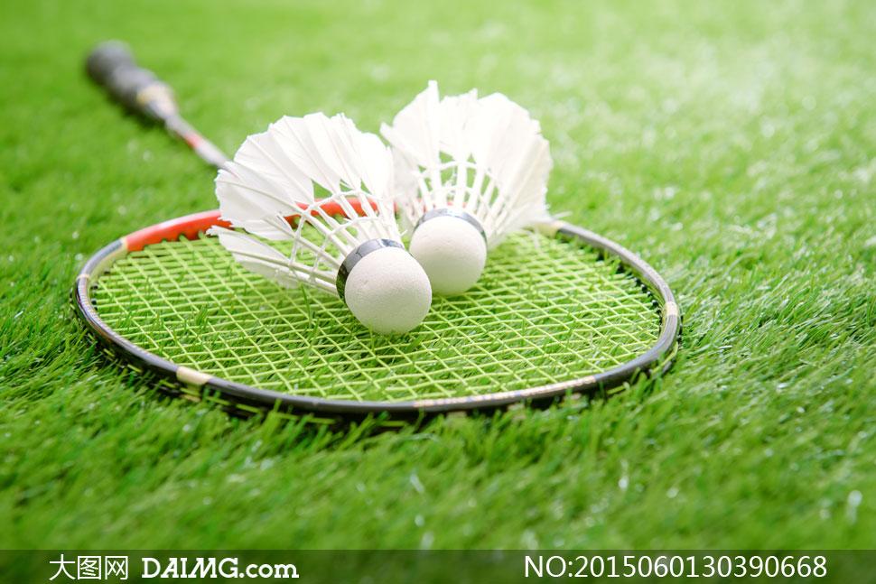 在草坪上的羽毛球拍等摄影高清图片