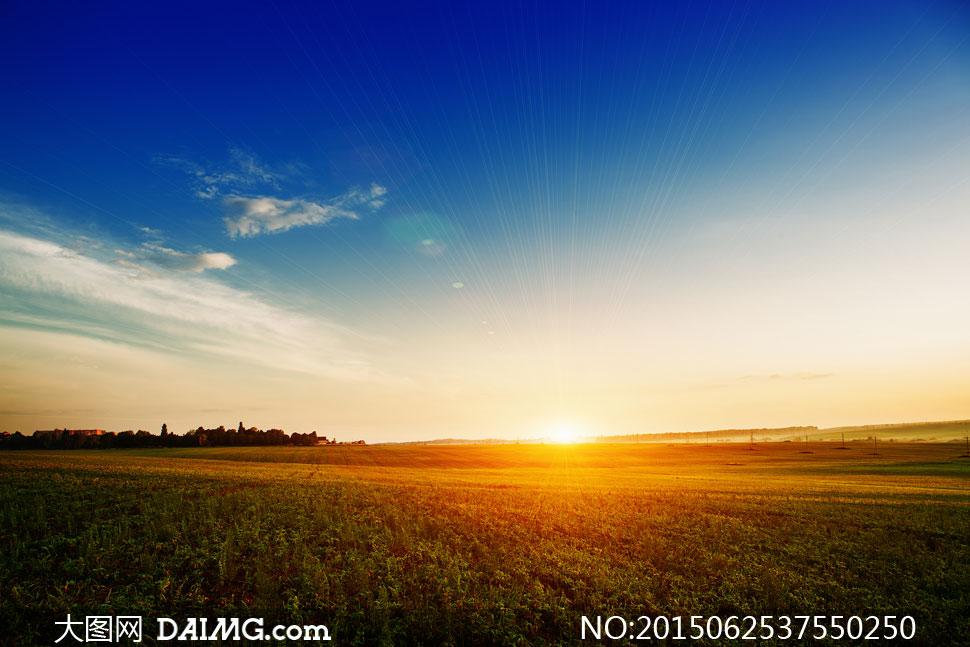 风景风光蓝天天空云层云彩白云光线阳光庄稼地农作物田地农田树木树丛