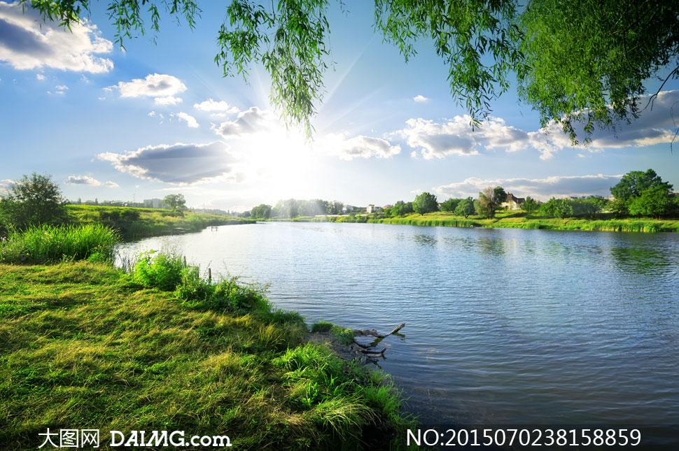 树木大树树丛植物草地草丛青草水面湖面河面河边水边湖边湖畔湖泊湖水