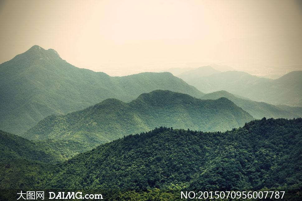 被树木覆盖的大山风景摄影高清图片
