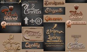 10款木纹效果3D立体字PSD模板
