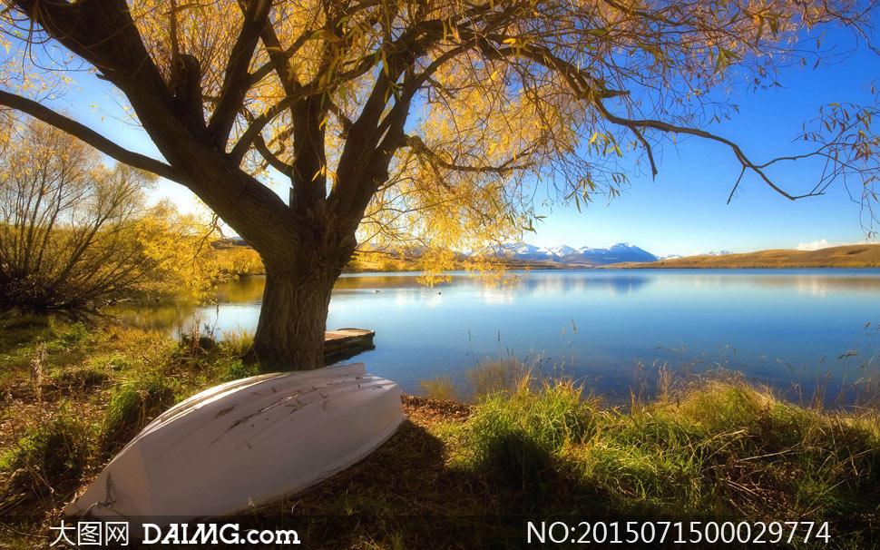 湖水湖泊蓝色的水倒影蓝天大树树木草丛杂草
