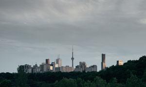 绿化树木与城市建筑物摄影高清图片