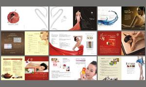 女性养生画册设计模板矢量素材