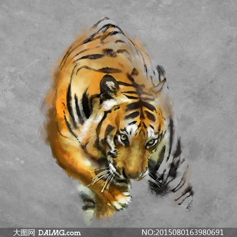 萌态可掬的小老虎绘画作品高清图片