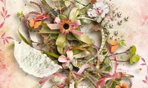 缎带植物与边框鲜花等欧美剪贴素材