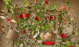 绿叶藤蔓与苹果花朵等欧美剪贴素材