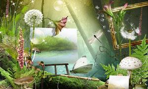 蝴蝶花朵与画板植物等欧美剪贴素材