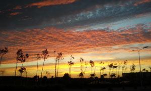 乡村傍晚美丽风光摄影图片