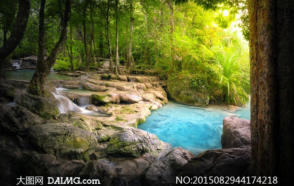 树木瀑布潭水大树绿叶植物植被叶子树叶岩石美景溪水