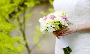 拿在手里的精致鲜花等摄影高清图片