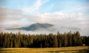 山间云雾缭绕和森林摄影图片