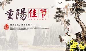 重阳节敬老赏菊海报设计PSD源文件
