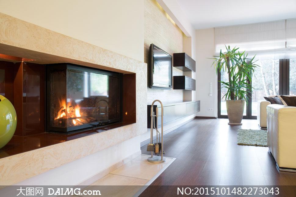 客厅里的电视机与盆栽摄影高清图片