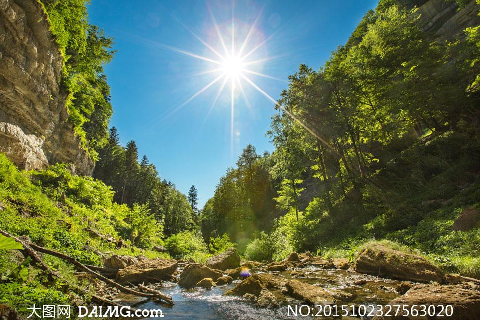 山间的树木乱石等风景摄影高清图片