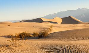 沙丘与远处的群山风光摄影高清图片