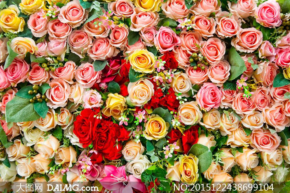 墙背景摄影高清图片下载 关 键 词: 高清摄影图片素材大图鲜花花朵