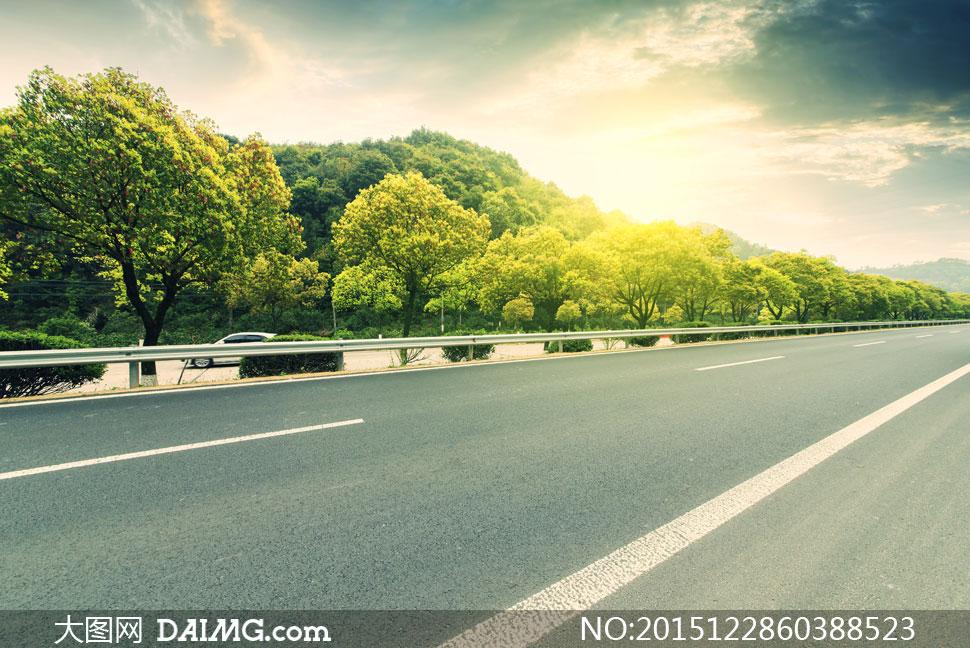 高速公路旁的茂密树林风景高清图片