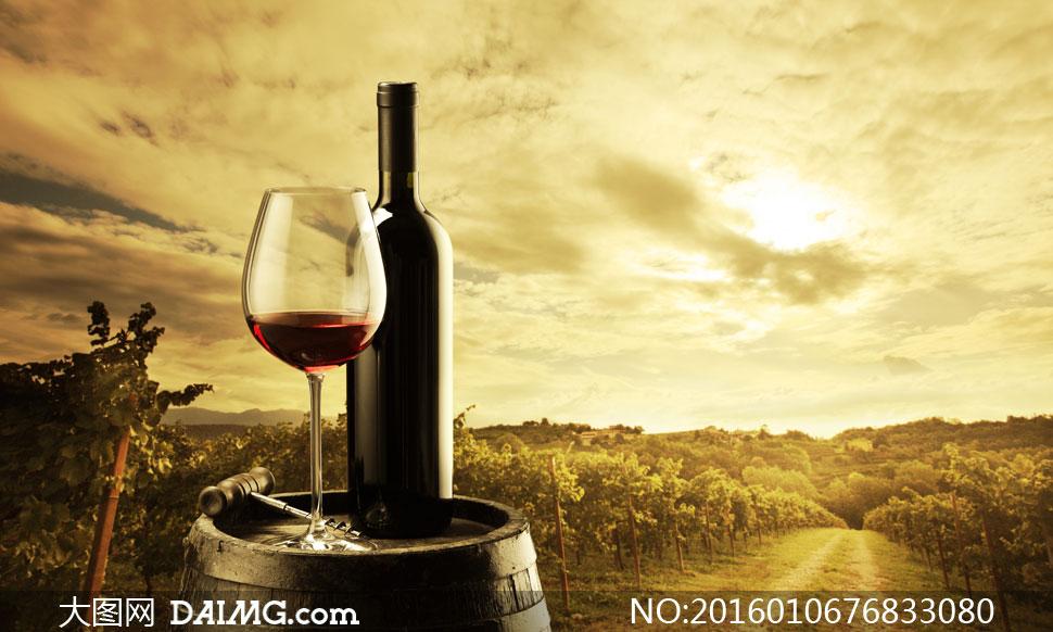 酒瓶葡萄酒开瓶器橡木桶酒桶种植园葡萄园自然风景风光红酒高脚杯小路